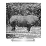 Rhino In Black And White Shower Curtain