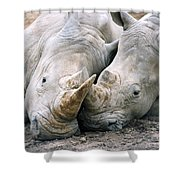 Rhino Love Shower Curtain