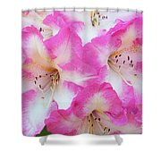 Rhododendron- Hot Pink Shower Curtain