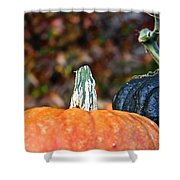 Rich Autumn Colors Shower Curtain