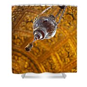 Richly Decorated Ceiling Shower Curtain