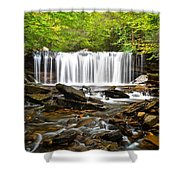 Ricketts Glen Waterfall Oneida Shower Curtain