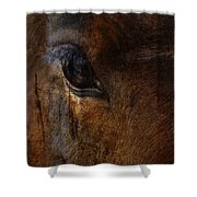 Ride With Trust Shower Curtain