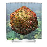 Rift Valley Fever Virus 1 Shower Curtain by Russell Kightley