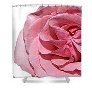 Ring Around The Rosie Shower Curtain