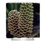 Ringed Flowers Shower Curtain