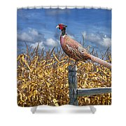 Ringneck Pheasant Shower Curtain