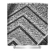 Ripple Effect Bw Palm Springs Shower Curtain