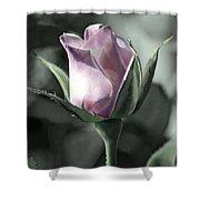 Rita Rose Shower Curtain