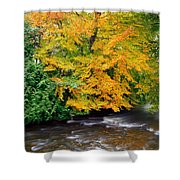 River Camcor In The Fall  Co Offaly Shower Curtain
