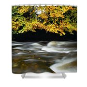 River Camcor Shower Curtain