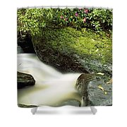 River Flowing Through A Forest, Torc Shower Curtain