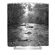 River Gaze Shower Curtain