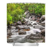 River In The Forest Shower Curtain