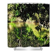 River Through The Trees Shower Curtain