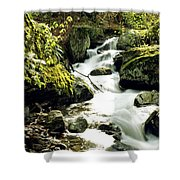 River With Rocks In The Forest Shower Curtain