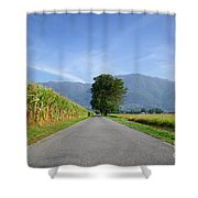 Road And Trees Shower Curtain