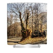 Road Curve With Trees Shower Curtain