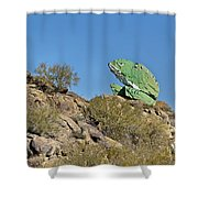 Road Frog Shower Curtain