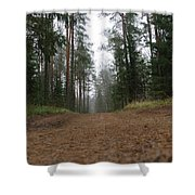 Road In A Pine Grove Shower Curtain