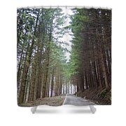Road In The Forest Shower Curtain