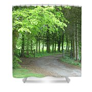 Road Into The Woods Shower Curtain