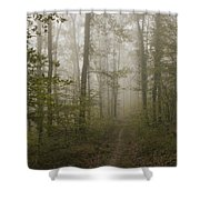 Road Of Insecurity Shower Curtain