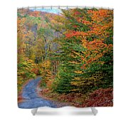 Road Through Autumn Woods Shower Curtain by Larry Landolfi and Photo Researchers