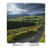 Road Through Glenelly Valley, County Shower Curtain