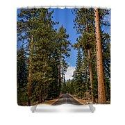 Road Through Lassen Forest Shower Curtain