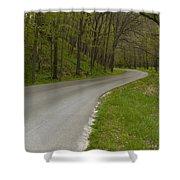 Road Thru Woods Spring 1 Shower Curtain