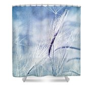 Roadside Blues Shower Curtain by Priska Wettstein