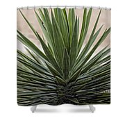 Roadside Discovery Shower Curtain