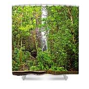 Roadside Waterfall Shower Curtain