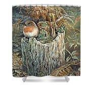Robin Christmas Card Shower Curtain
