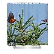Robin Lift Off Shower Curtain