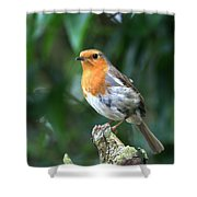 Robun 3 Shower Curtain