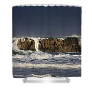 Natures Wonders Shower Curtain