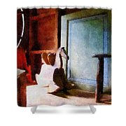 Rocking Horse In Attic Shower Curtain