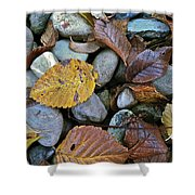 Rocks And Leaves Shower Curtain
