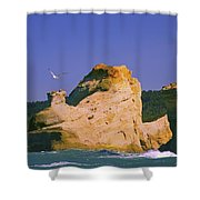 Rocky Coast Of Cape Kiwanda State Shower Curtain