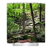 Rocky Forest Of Chatfield Shower Curtain