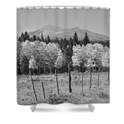 Rocky Mountain High Country Autumn Fall Foliage Scenic View Bw Shower Curtain