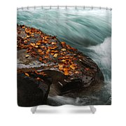Rocky Mountain Stream Shower Curtain