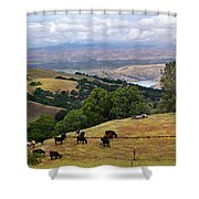 Rocky Ridge Shower Curtain