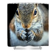 Rodent Shower Curtain