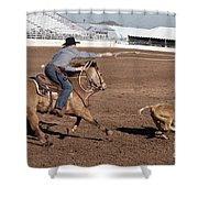 Rodeo 10 Shower Curtain