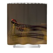 Rollercoaster Shower Curtain