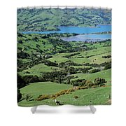 Rolling Fields With Grazing Sheep Shower Curtain