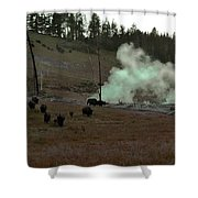 Rolling Stampede Shower Curtain